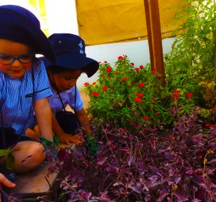 Photograph of children engaged in environmentally focused educational activities at Dubai British Foundation in Dubai