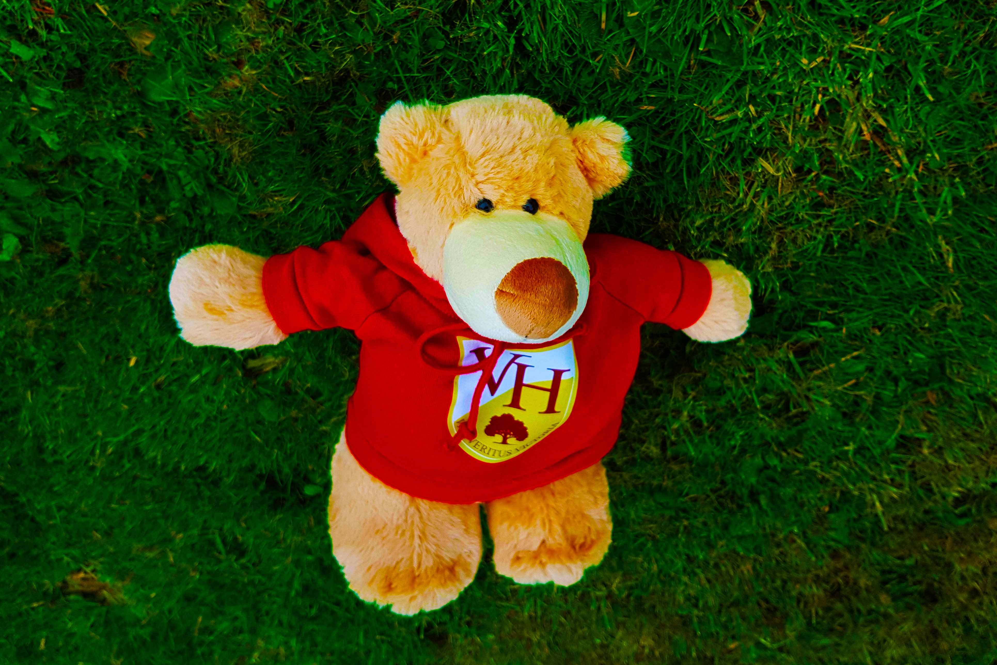 Image of the Victory heights Primary School VHP Teddy Bear that links home and school life for children