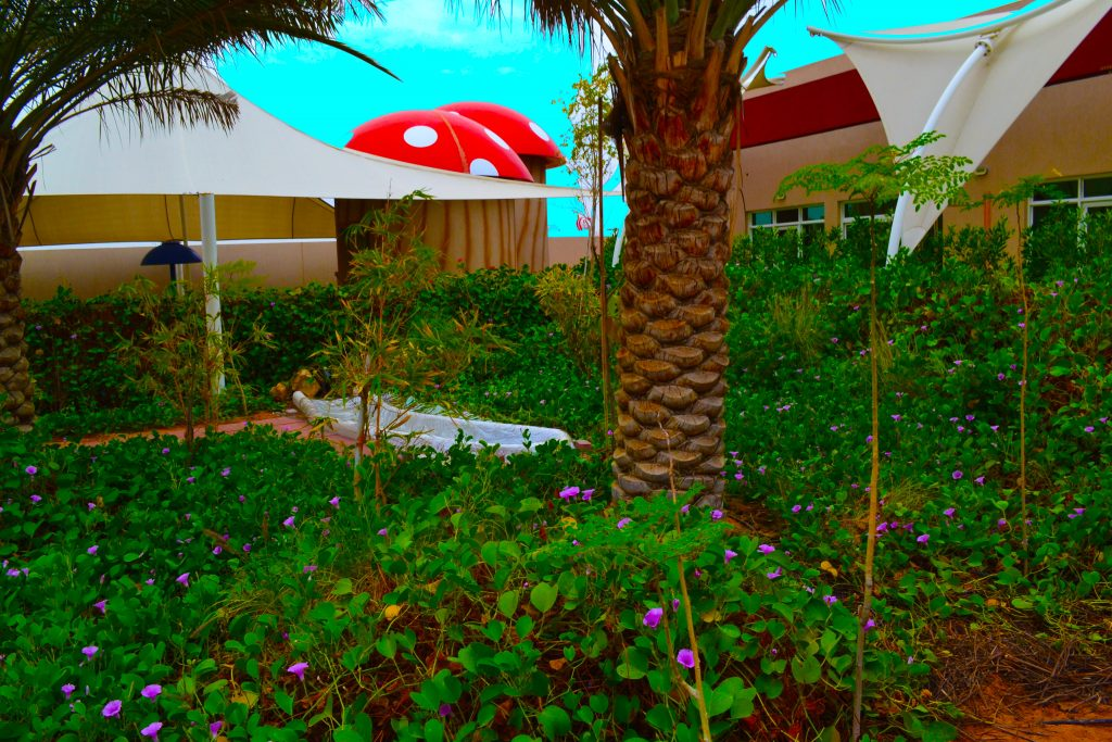 Photograph of the gardens leading to the swimming pool area at Future International Nursery Dubai