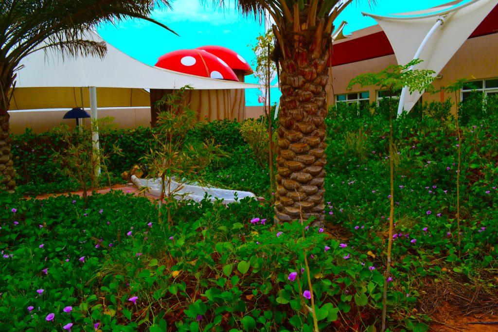 Foto der Gärten, die zum Poolbereich im Future International Nursery Dubai führen