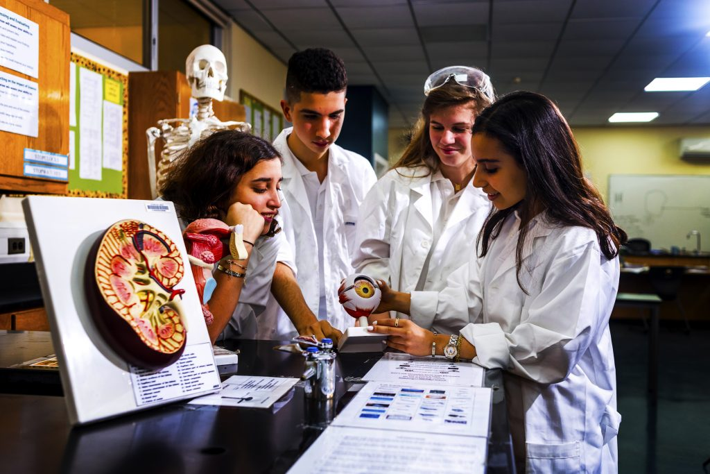 Photograph of students at Jumeira Baccalaureate School in Dubai engaged in the study of Biology and preparatory Medicine.