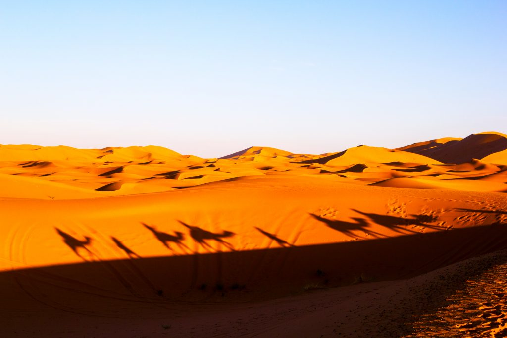 Desert trips in the UAE provide an on the doorstep experience that familis around the world dream of