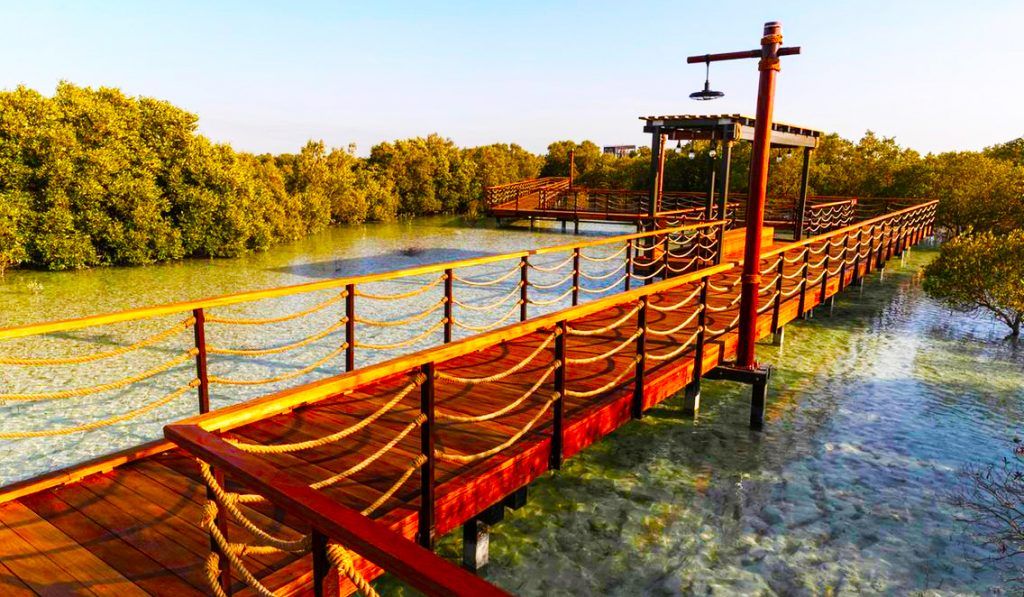Parents can take children to the new Mangrove Walk in Abu Dhabi during the school holidays