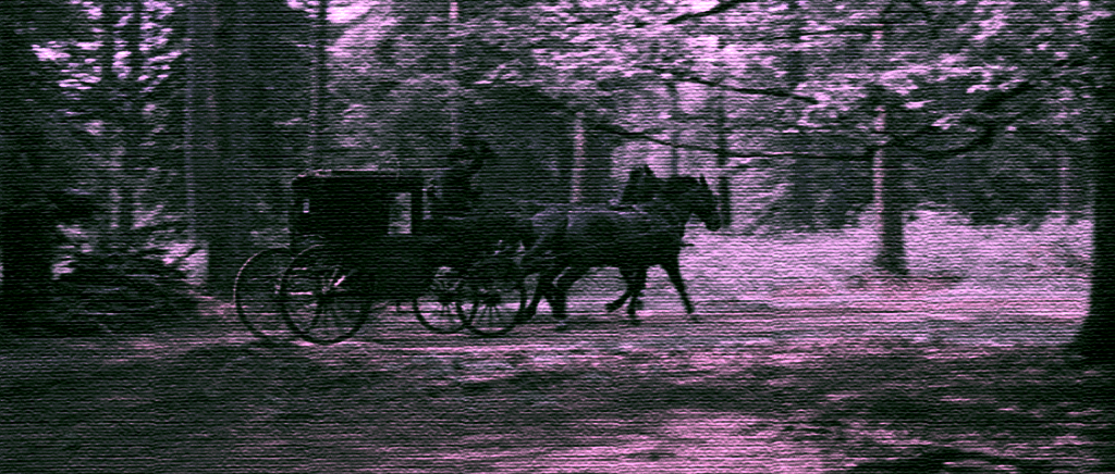 Chapter 36 of the Write a Novel Challenge finds the protagonist being taken by unknown assailants in a horse drawn carriage .... to where?