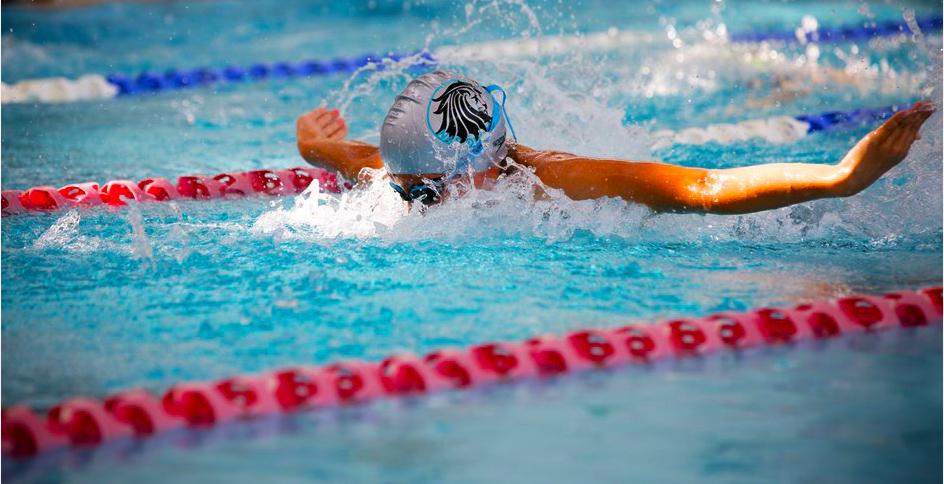 Zu den Sportanlagen und Leistungssportarten der Nord Angloa International School in Dubai gehört das Schwimmen